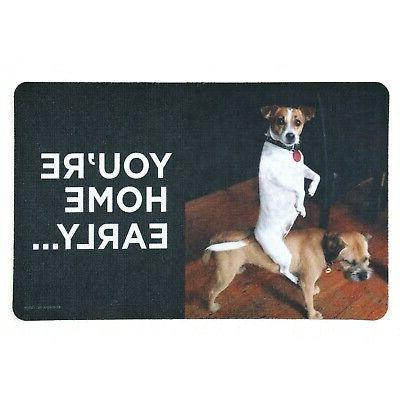 you re home early doormat funny dog