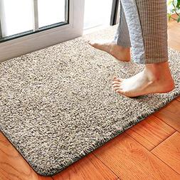 Delxo 24 x 36 Inch Magic Doormat Super Absorbs Mud Doormat N
